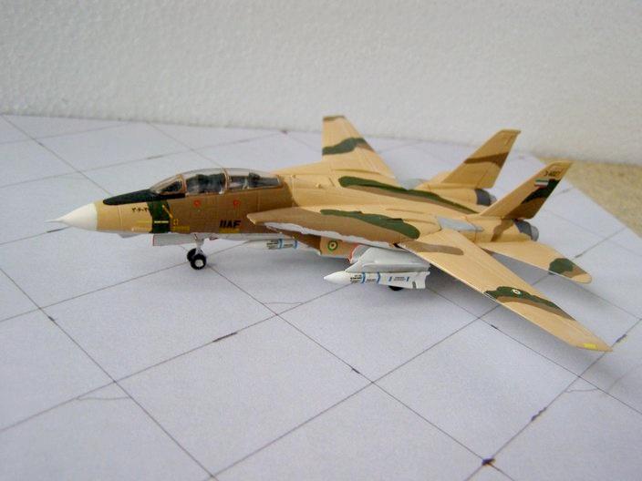 F-14A IIAF